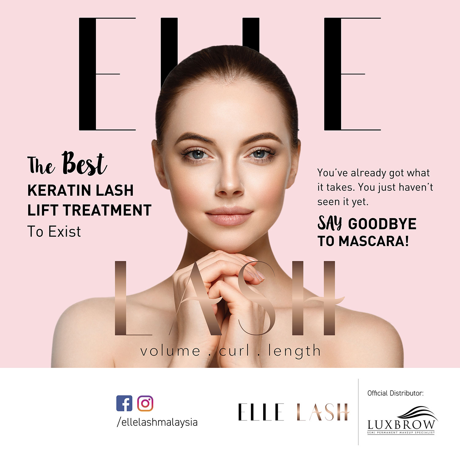 elle lash rollup banner and backgdrop design